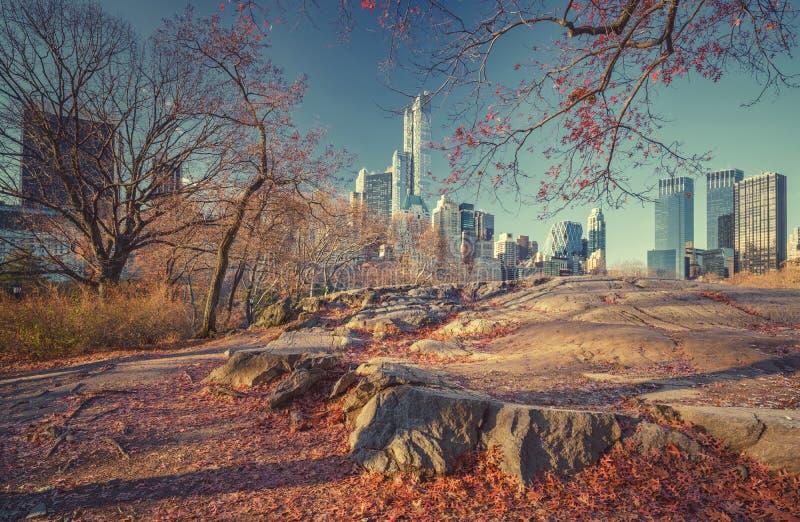 Centrala park przy jesień rankiem fotografia royalty free