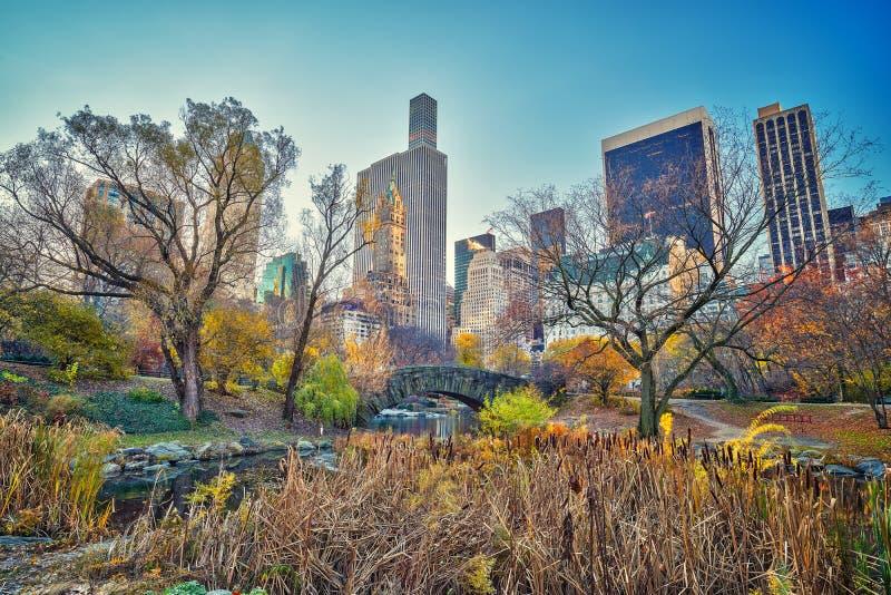 Centrala park przy jesień rankiem zdjęcia royalty free