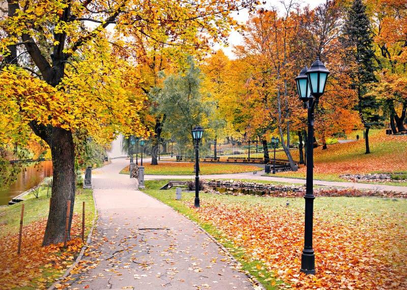 Centrala park w Ryskim w jesieni, Latvia fotografia royalty free