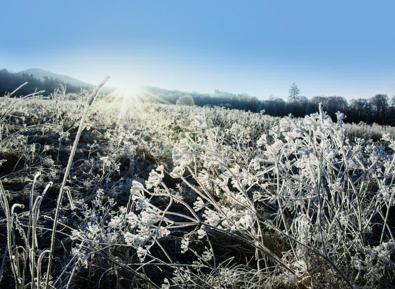 Centrale congelée parhiver et lever de soleil photo stock