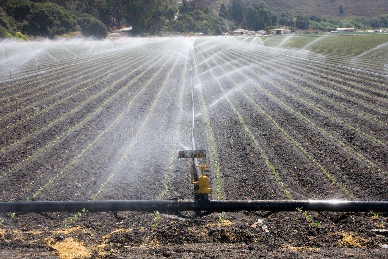 Centrale d'irrigation photographie stock libre de droits
