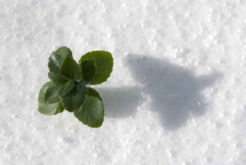 Download Centrale dans la neige image stock. Image du instruction - 4350371