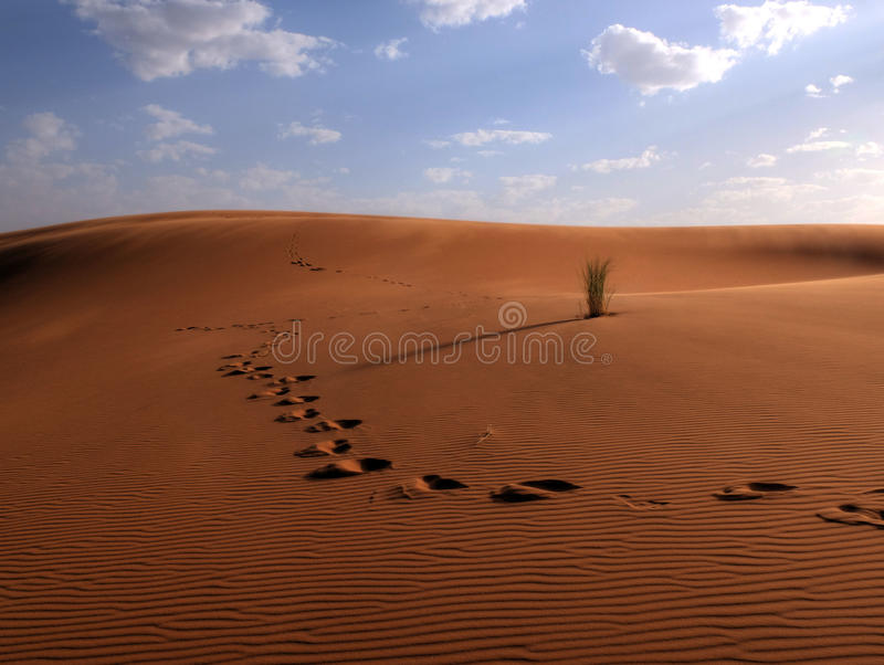 Centrale dans le désert photos stock