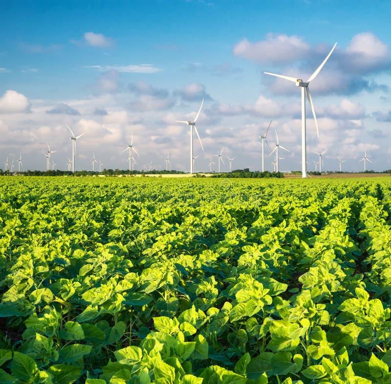 Centrale elettrica del vento fotografia stock