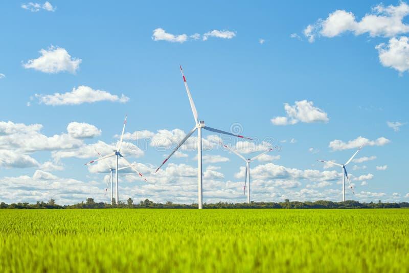 Centrale eolica nel campo verde contro il cielo nuvoloso immagini stock