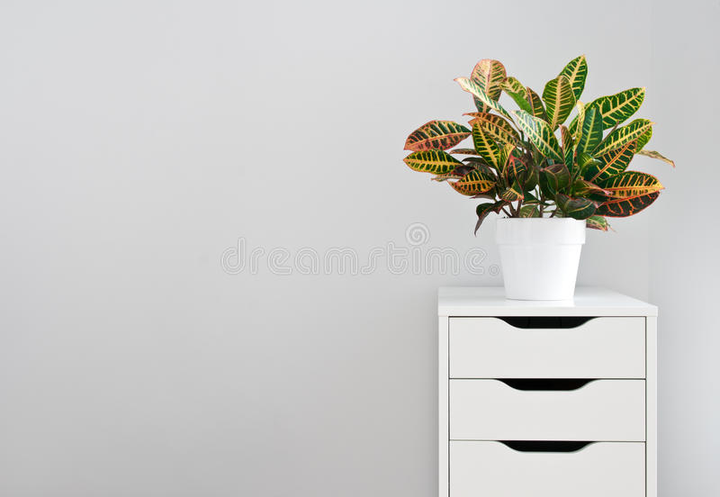 Centrale lumineuse et coffre blanc de tiroir photo stock