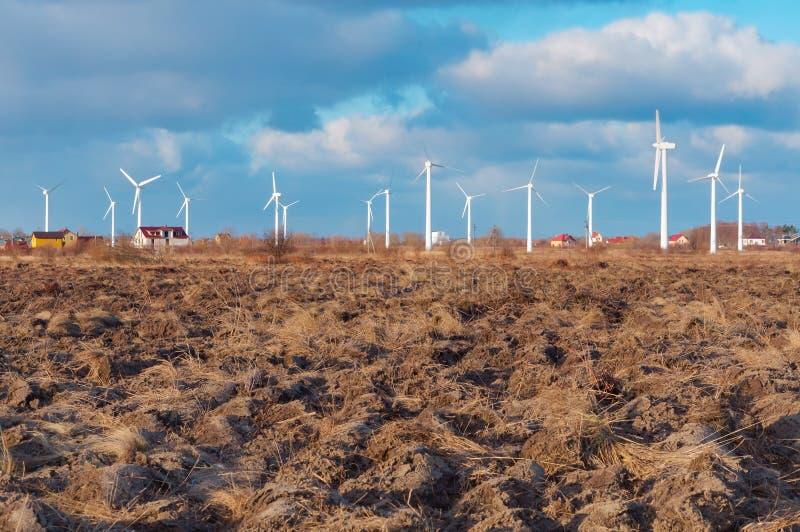 Centrali eoliche bianche, molti generatori eolici nel campo fotografia stock libera da diritti
