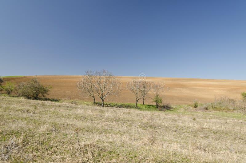 centralt fält som plogas russia fjädertid arkivfoto