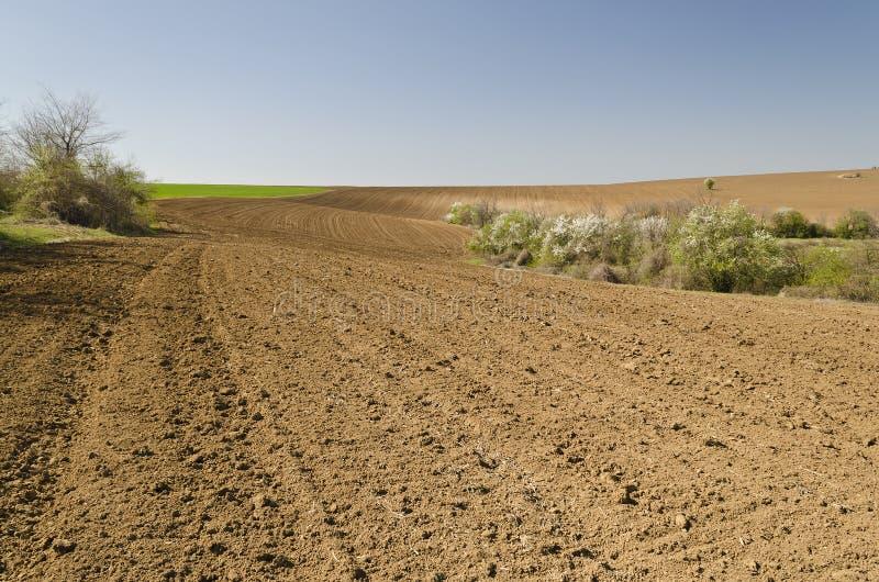 centralt fält som plogas russia fjädertid arkivfoton