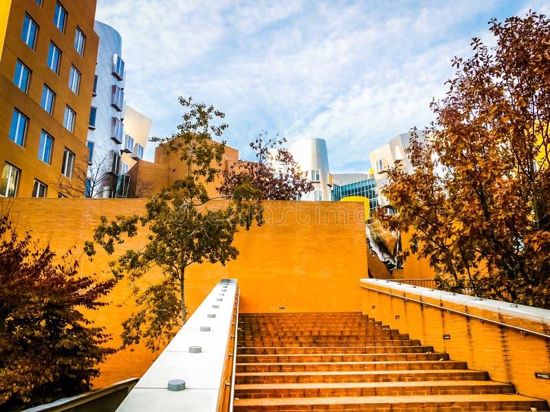 Centre célèbre d'état chez Massachusetts Institute of Technology à Boston, mA photographie stock libre de droits