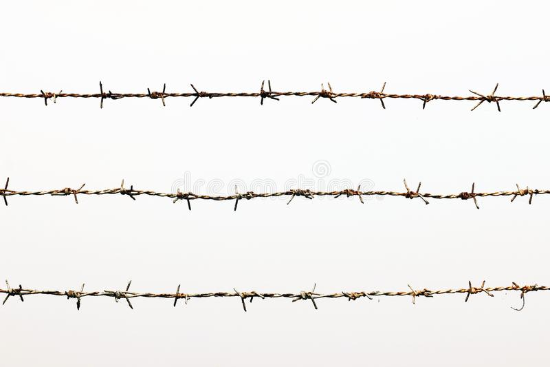 Centre de détention rouillé de barbelé d'isolement sur le blanc images stock
