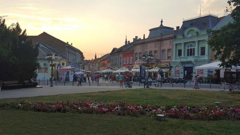 Centre de Novi Sad, rue de Dunavska images stock