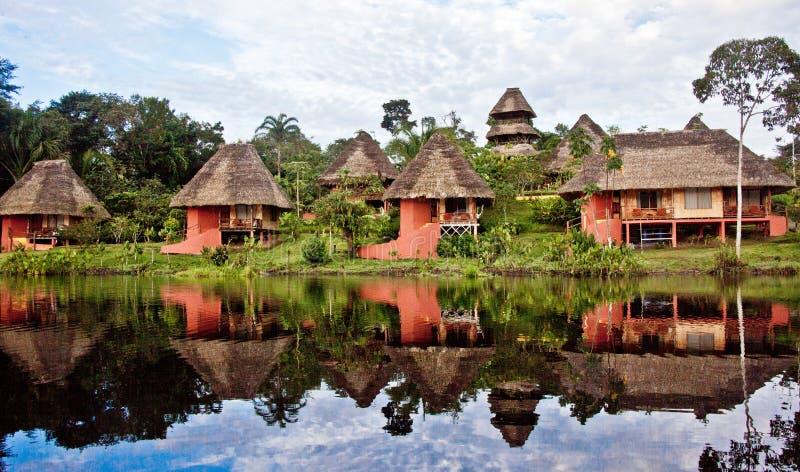 Centre de région sauvage de Napo en Amazone photos libres de droits