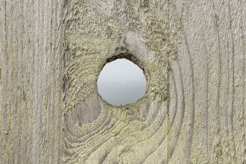 Download Centre stock image. Image of circle, circular, single - 31313847