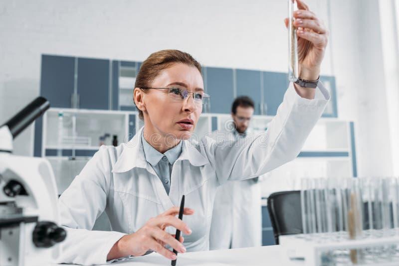 centre sélectif de scientifique féminin regardant le tube avec du réactif à disposition avec le collègue derrière photos libres de droits