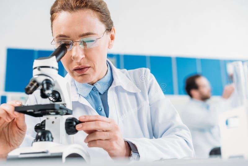 centre sélectif de scientifique féminin semblant le microscope complet sur le réactif avec le collègue derrière photographie stock libre de droits