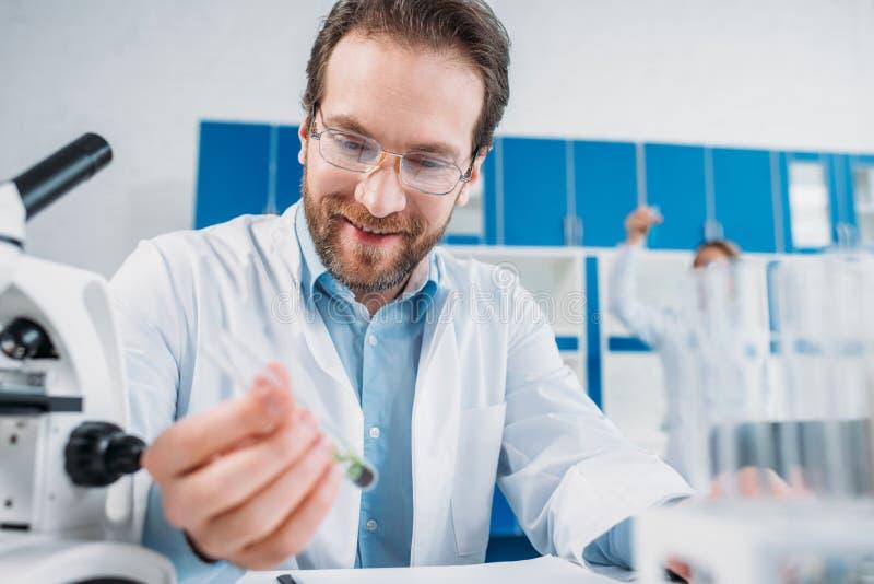 centre sélectif de scientifique de sourire dans le manteau blanc et des lunettes regardant le flacon avec du réactif à dispositio photos stock