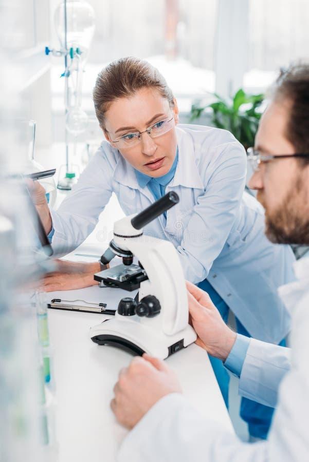centre sélectif des scientifiques dans des lunettes fonctionnant ensemble sur le lieu de travail avec le microscope photographie stock libre de droits