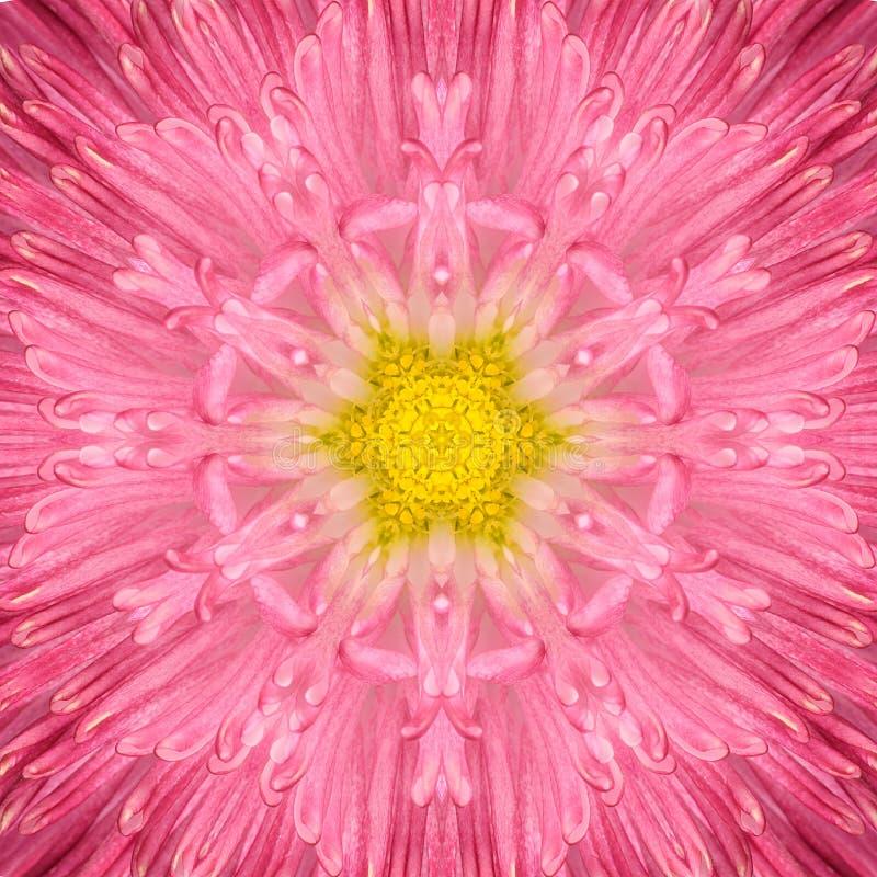 Centro concéntrico rosado de la flor. Diseño de Mandala Kaleidoscopic imágenes de archivo libres de regalías