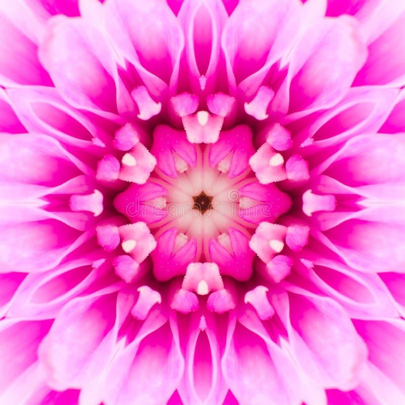 Centro concéntrico rosado de la flor. Diseño de Mandala Kaleidoscopic fotografía de archivo libre de regalías