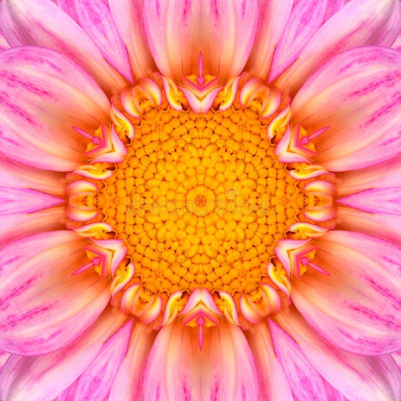 Centro concéntrico rosado Mandala Kaleidoscope de la flor imagen de archivo libre de regalías