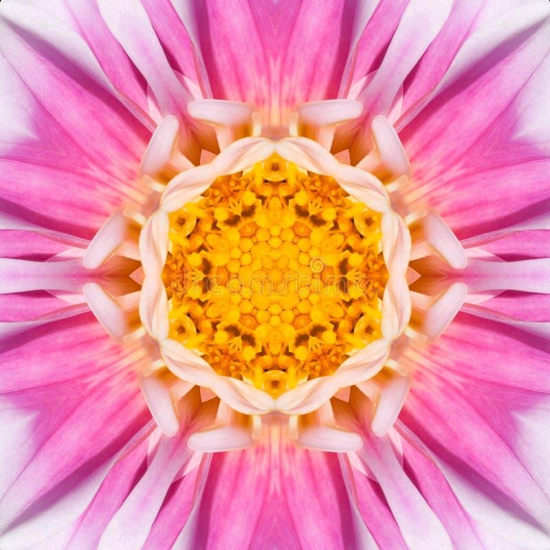 Centro concéntrico rosado Mandala Kaleidoscope de la flor imagen de archivo