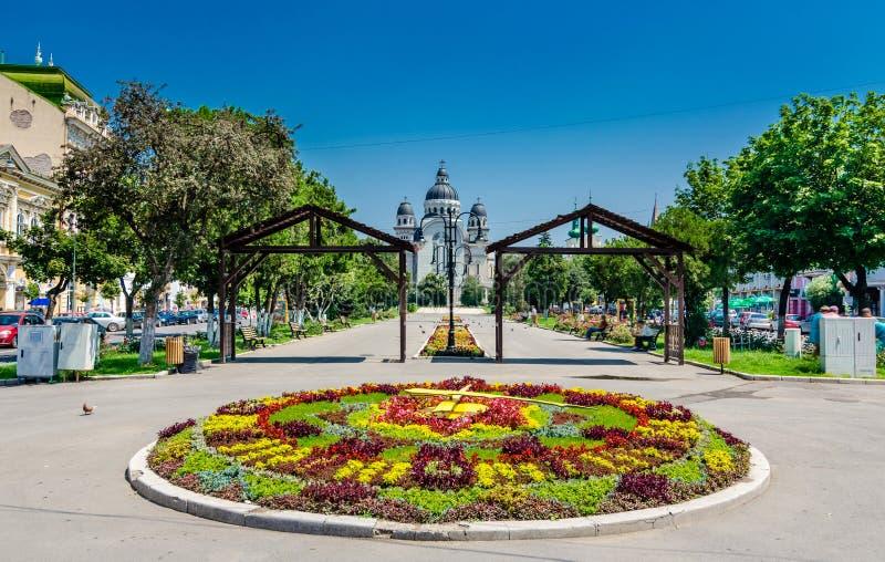 Centro da cidade de Targu Mures fotos de stock royalty free
