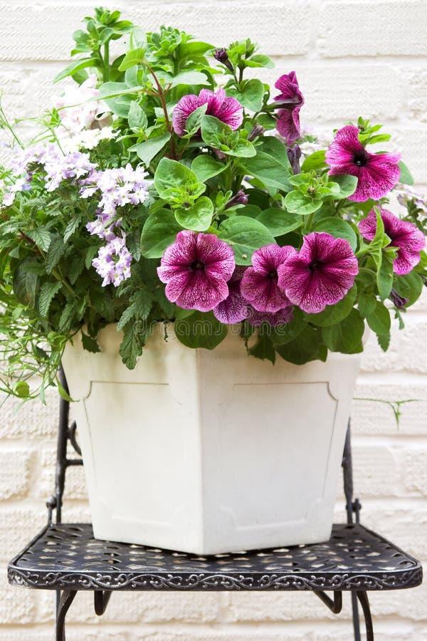 Centro de flores del verano imagenes de archivo