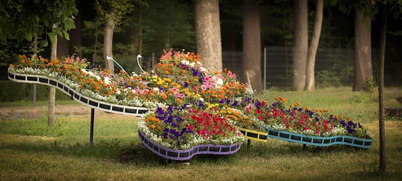 Centro de flores hermoso bajo la forma de mariposa multicolora hecha de crisantemos rosados, amarillos, púrpuras Decoración de la foto de archivo