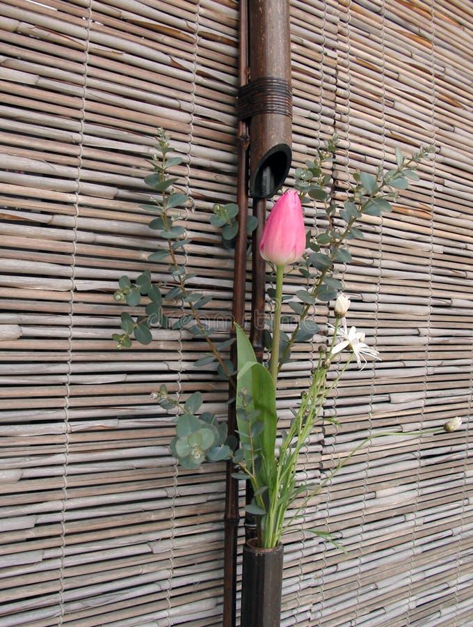 Centro de flores japonés del resorte imagenes de archivo