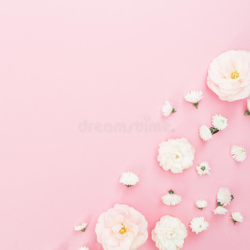 Centro de flores de las rosas blancas en fondo rosado Endecha plana, visión superior Fondo floral fotografía de archivo libre de regalías