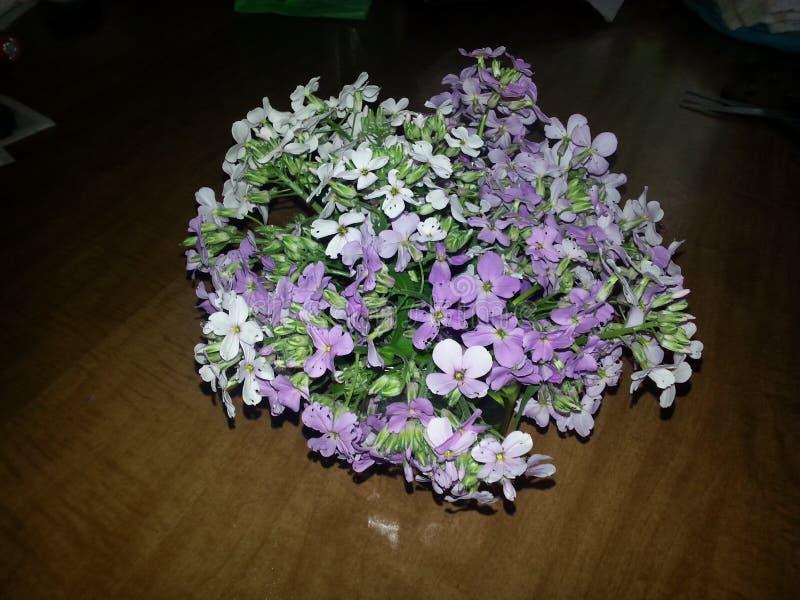 Centro de flores salvajes foto de archivo libre de regalías