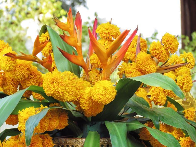 Centro de flores tropical en la decoración exterior fotos de archivo