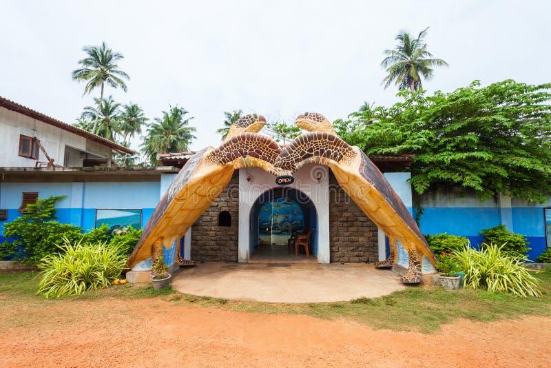Centro del santuario della tartaruga, Hikkaduwa fotografie stock libere da diritti