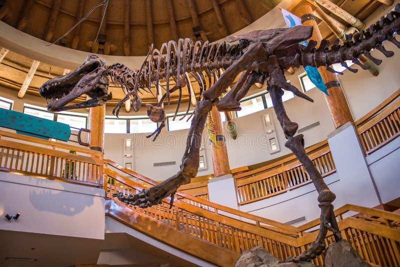 Centro di scoperta di Jurassic Park agli studi universali immagine stock