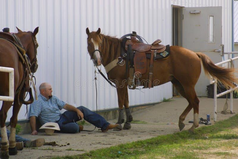 Centro equestre nacional 2016 fotos de stock