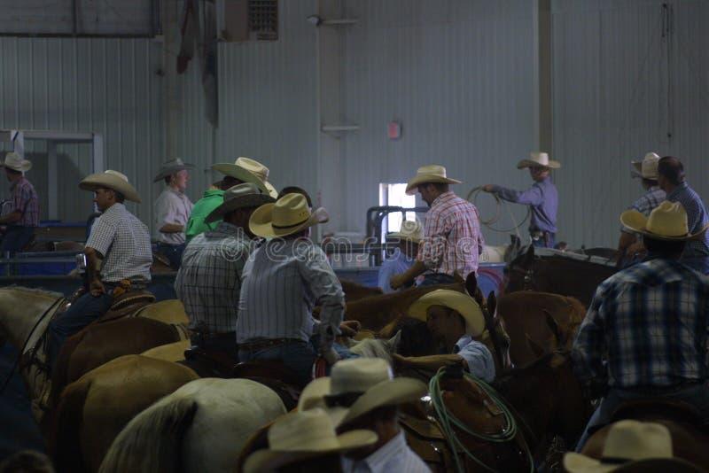 Centro equestre nacional 2016 foto de stock royalty free