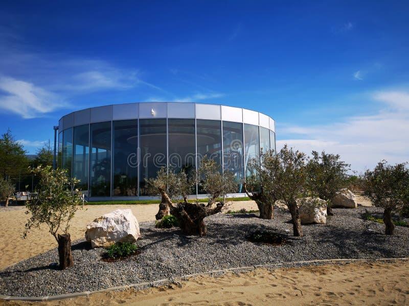 Centro turístico exótico y moderno con los olivos imagen de archivo libre de regalías