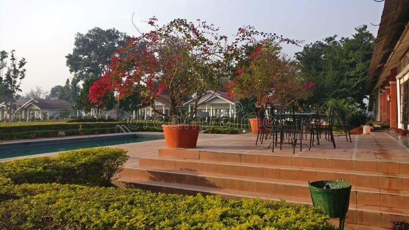 Centro turístico Kaziranga del golf imágenes de archivo libres de regalías