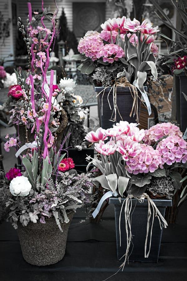 Centros de flores rosados imagen de archivo libre de regalías