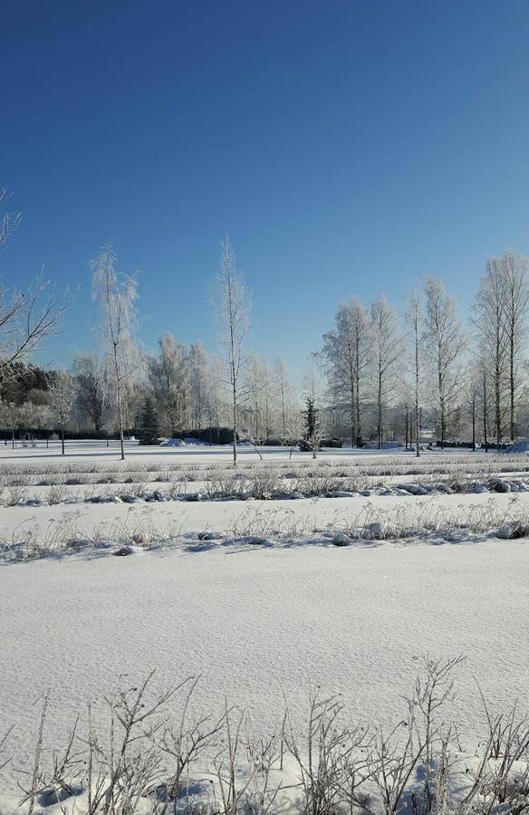 centrum wyraźny kościelna dni surgut zimy historycznej zdjęcia royalty free