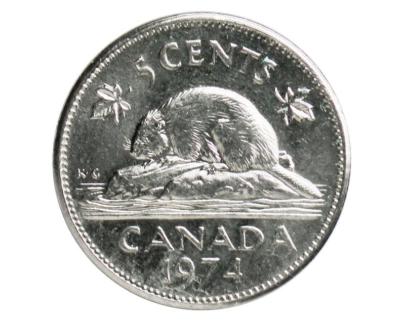 5 Cents Beaver coin, 1952~Today - Elizabeth II serie, Bank of Canada royalty free stock image