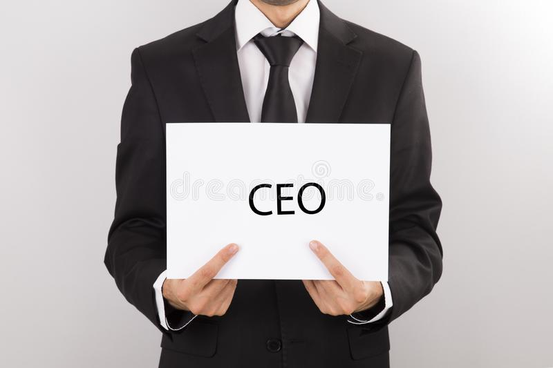 Ceo, businessman in suit, royalty free stock photography