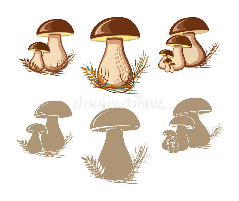 Cep. Edible mushrooms. Isolated silhouettes vector illustration