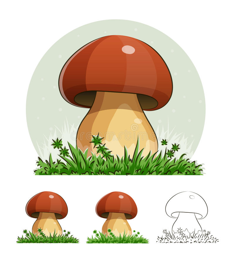 Cep. Mushroom. Eps10 illustration. on white background vector illustration