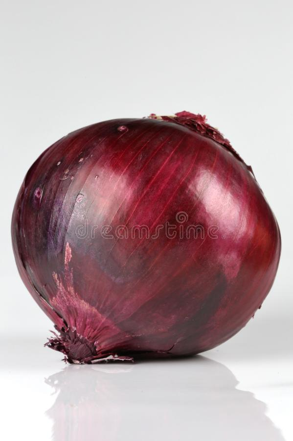 Cepa d'allium d'oignon rouge images stock