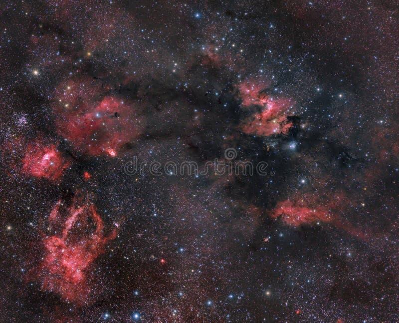 cepheuskonstellationnebulosity royaltyfria foton