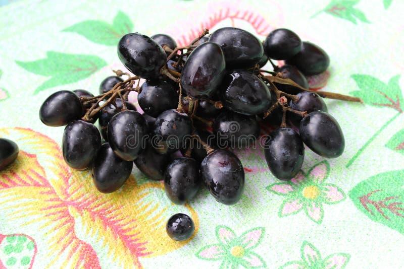Cepillo de la uva foto de archivo libre de regalías