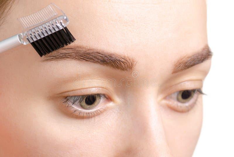 Cepillo femenino de la ceja del marrón de la forma de la ceja imágenes de archivo libres de regalías