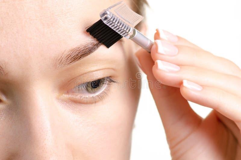 Cepillo femenino de la ceja del marrón de la forma de la ceja imagen de archivo